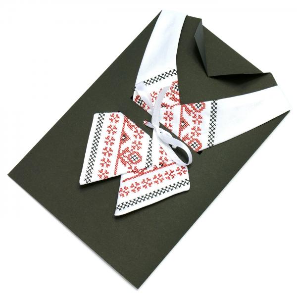Крос-краватка з вишивкою Берест
